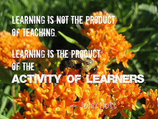 john holt learning is the product of the activity of learners 320x240
